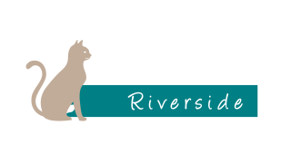 All Paws Riverside Animal Hospital